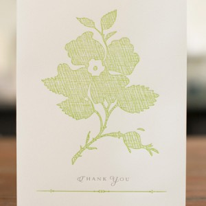 Sesame Letterpress Silhouette Cards via Oh So Beautiful Paper (2)