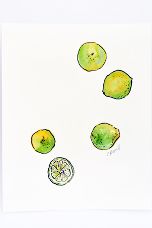 Courtney-Khail-Watercolor-Painting-OSBP-Limes
