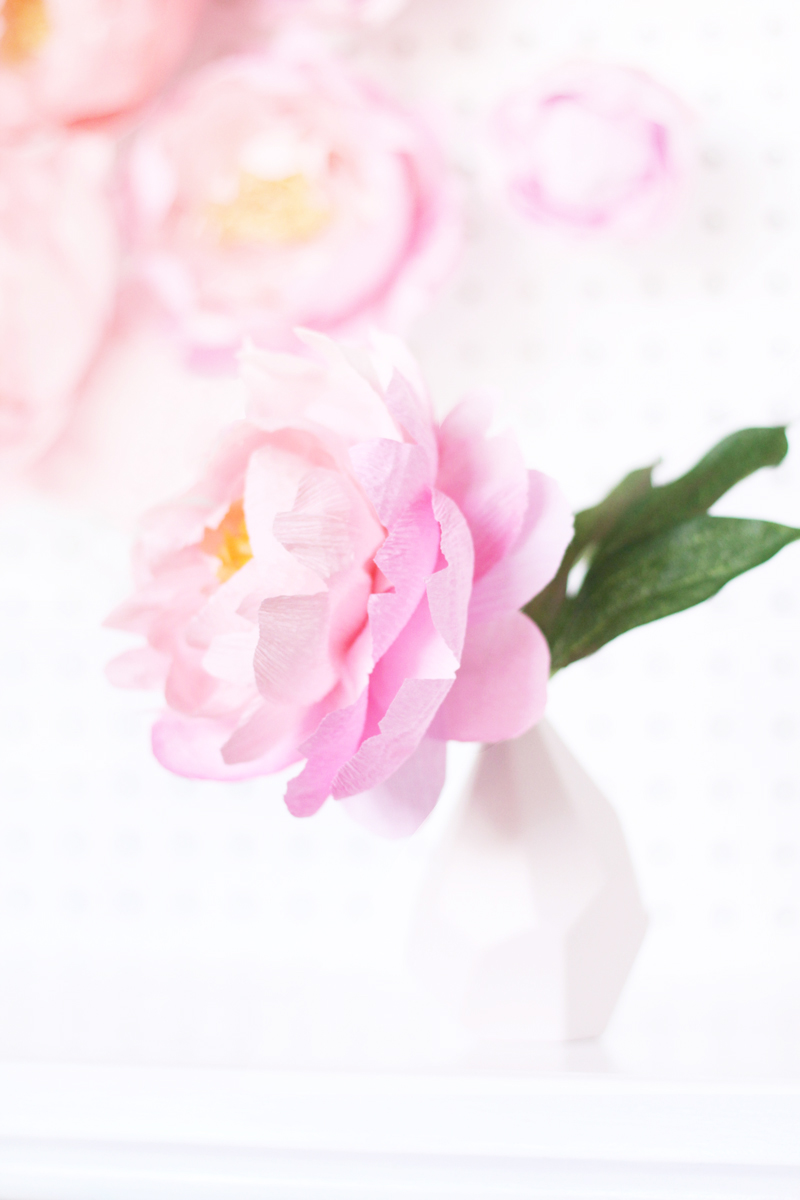 Fresh Cut Paper Flowers: Peonies by Appetite Paper for Oh So Beautiful Paper