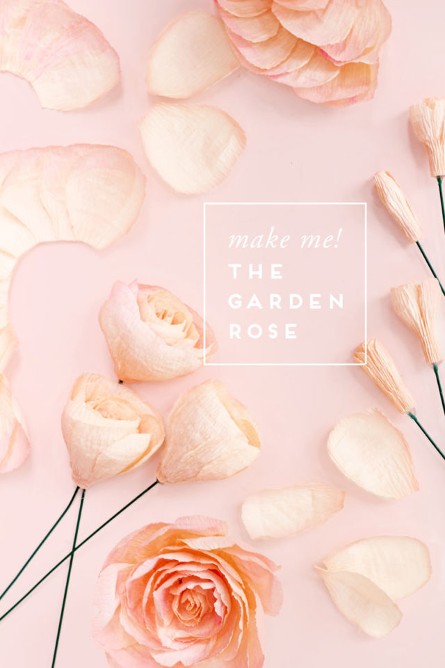 Fresh Cut Paper Flowers: The Garden Rose by Appetite Paper for Oh So Beautiful Paper