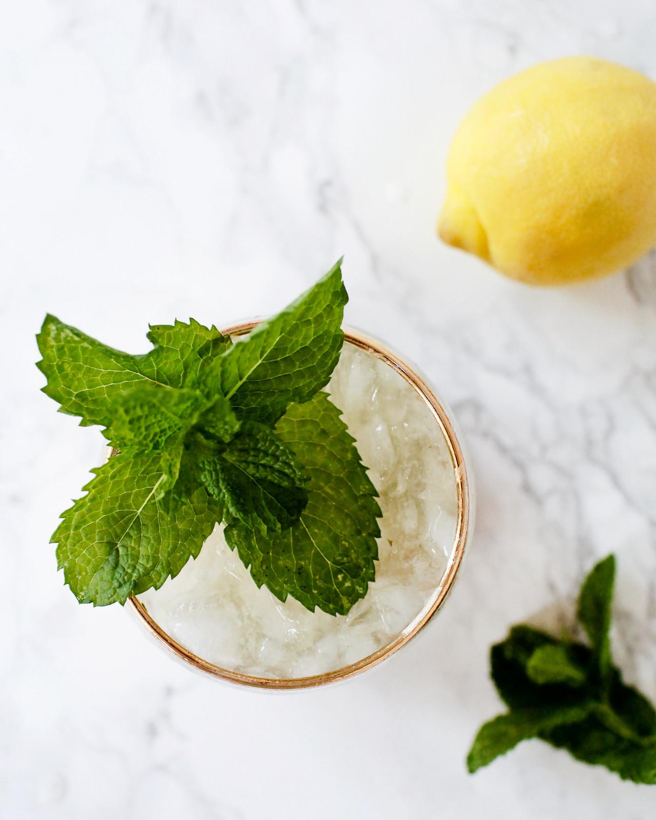 Lemon-Mint Gin Smash Cocktail Recipe / Oh So Beautiful Paper