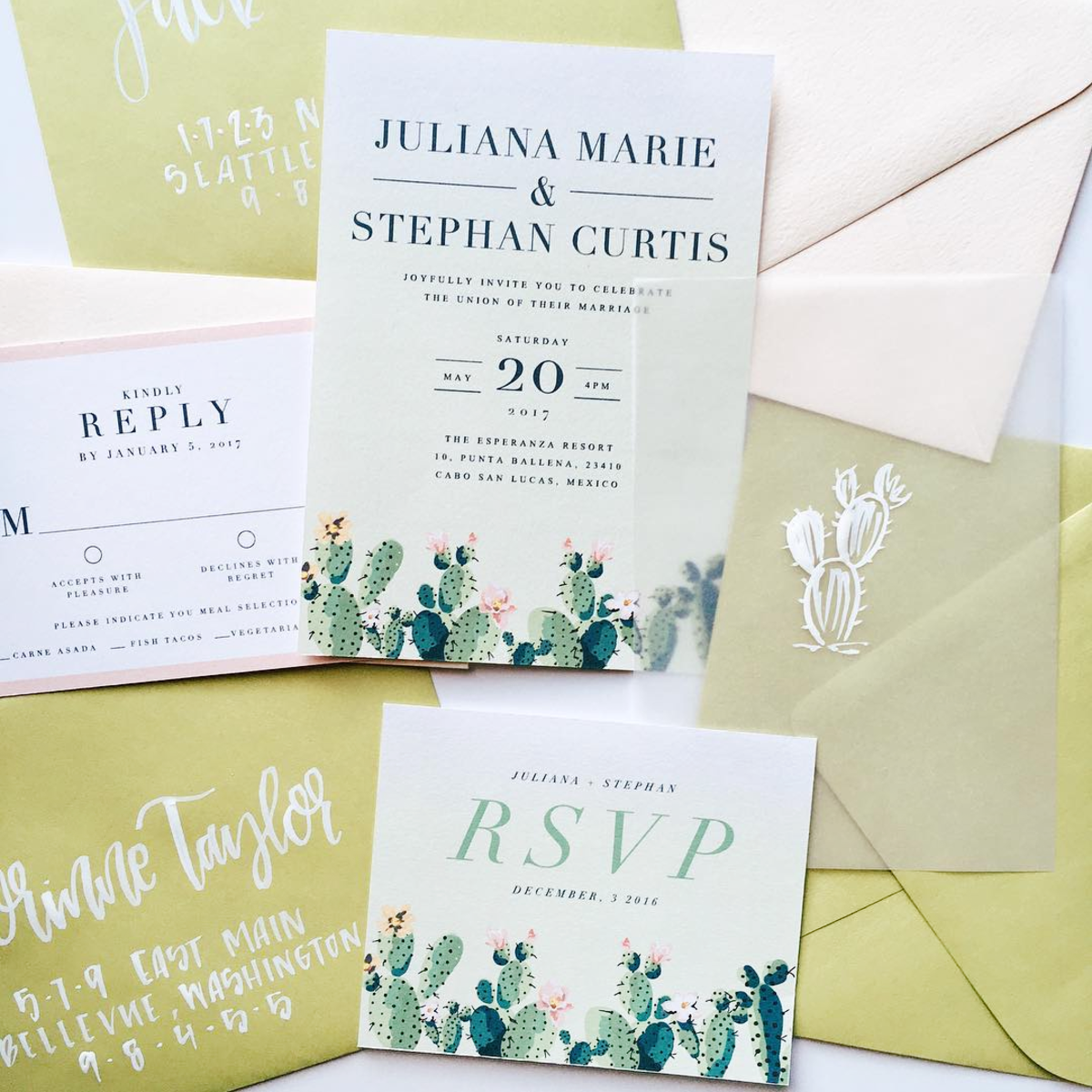 Vellum Cactus Wedding Invitation by Robinson Paperie
