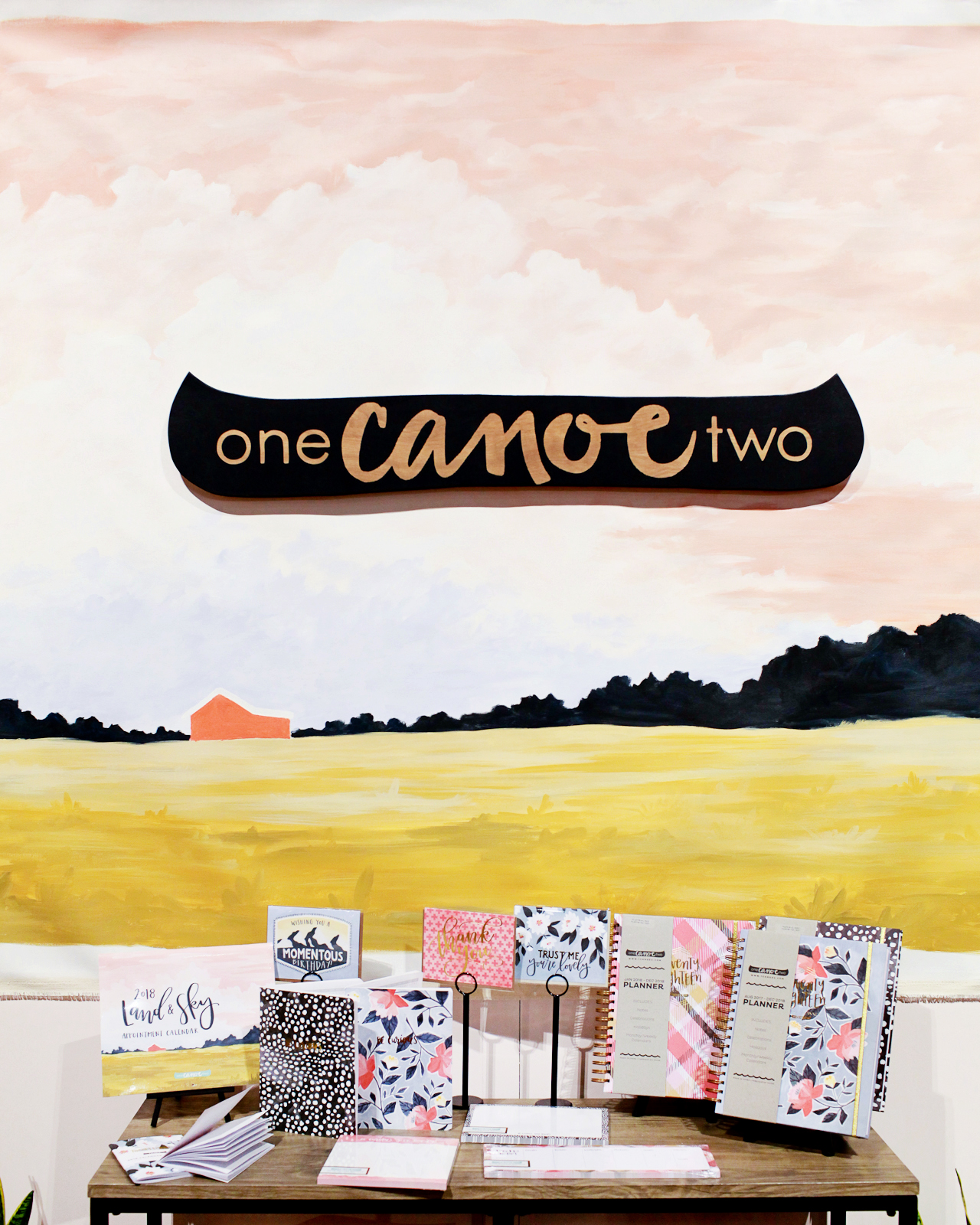 NSS 2017: One Canoe Two