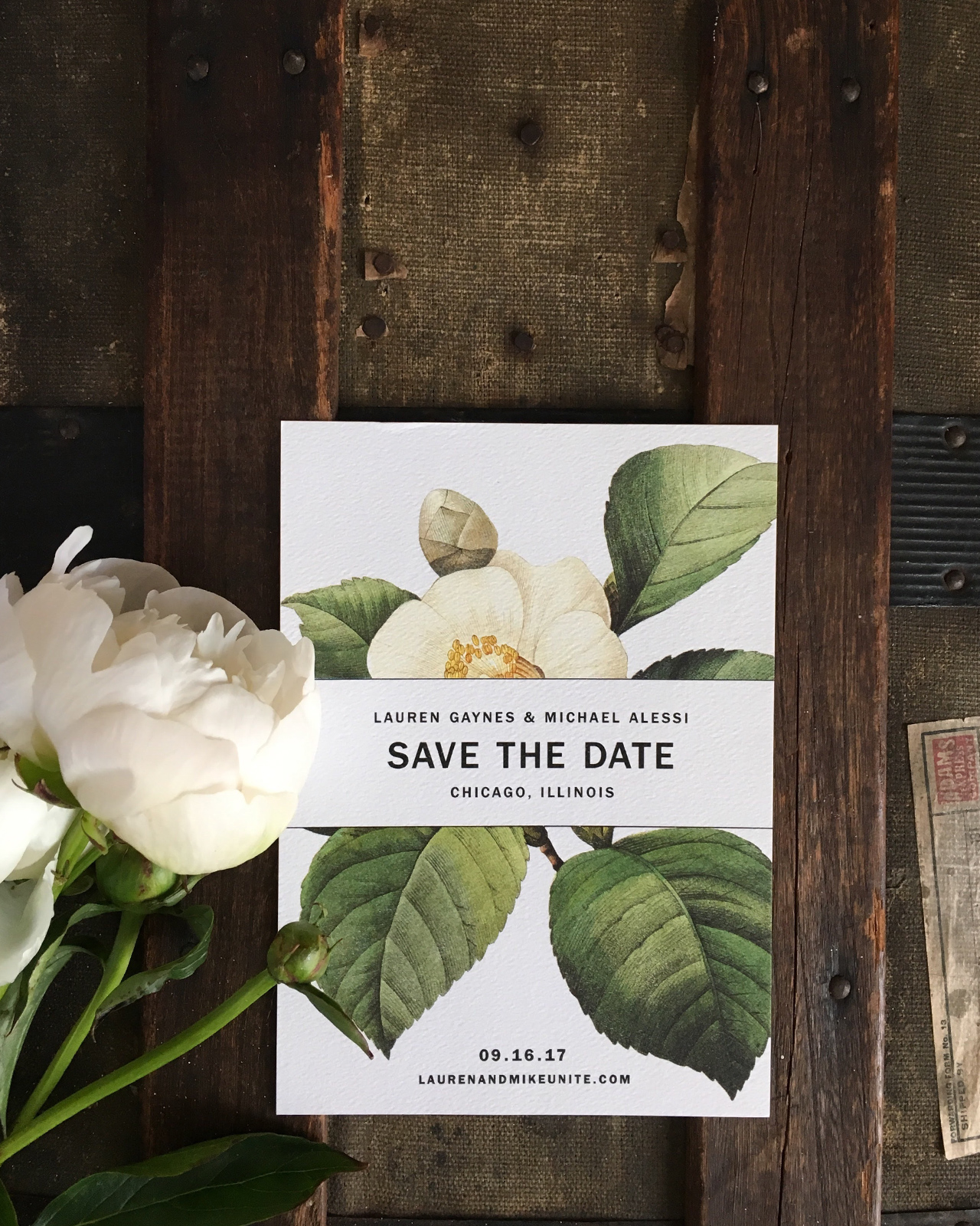 Modern Botanical Chicago Wedding Invitations by Christina Egan Chang