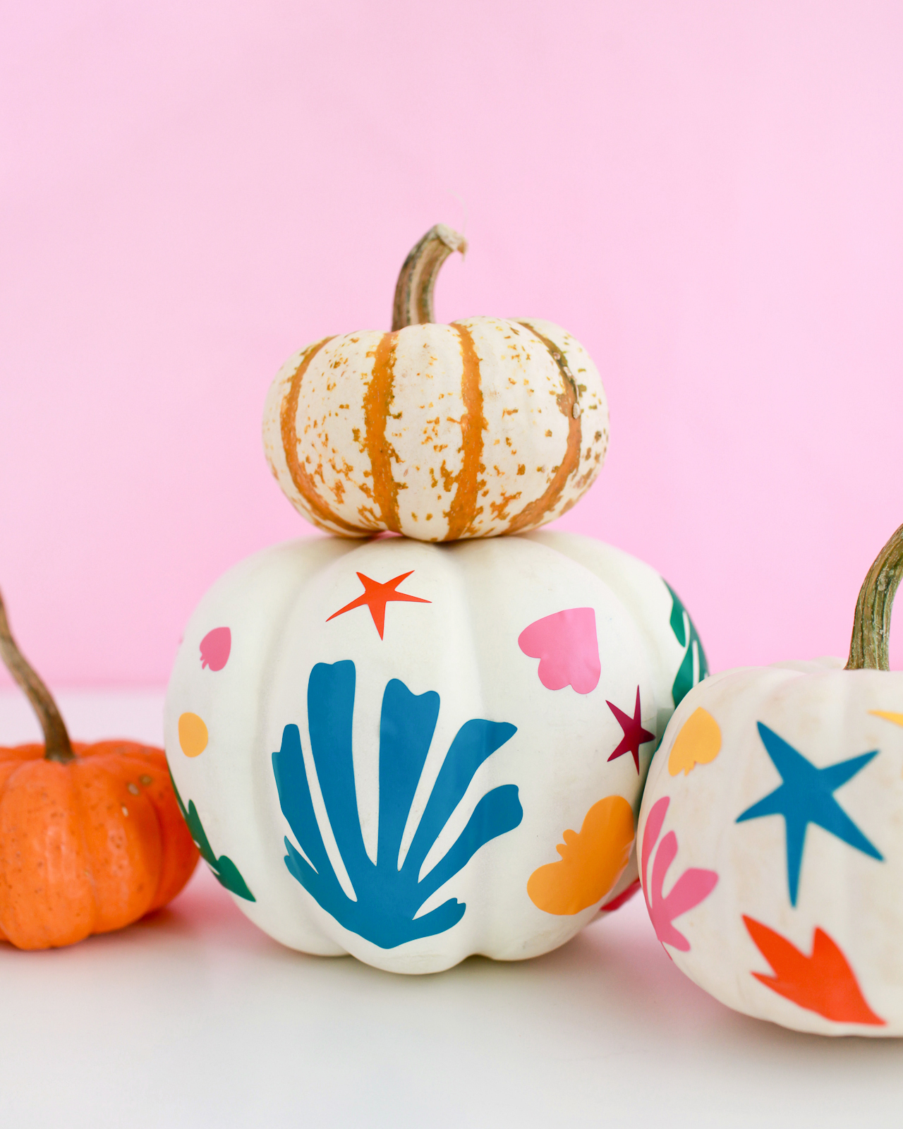 DIY Matisse-Inspired Pumpkins