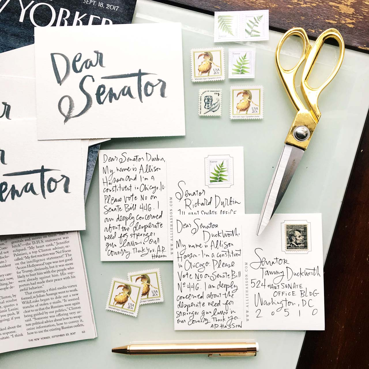Printable Dear Senator and Dear Representative Postcards