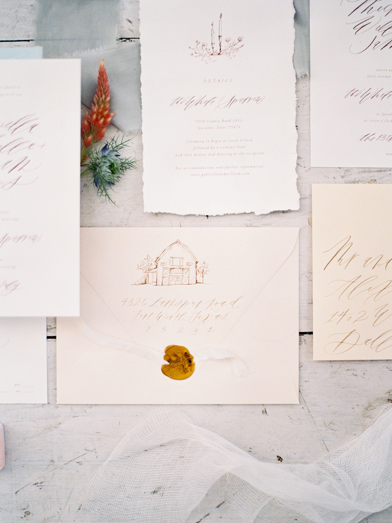 Calligraphy Inspiration: Sarah Ann Design