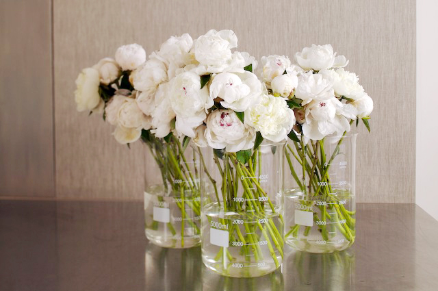 White peonies wedding centerpieces in glass beakers